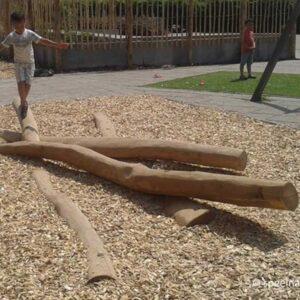 klimbomen voor natuurspeeltuin