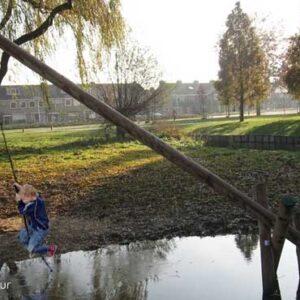 touw om aan te slingeren aan boomstam